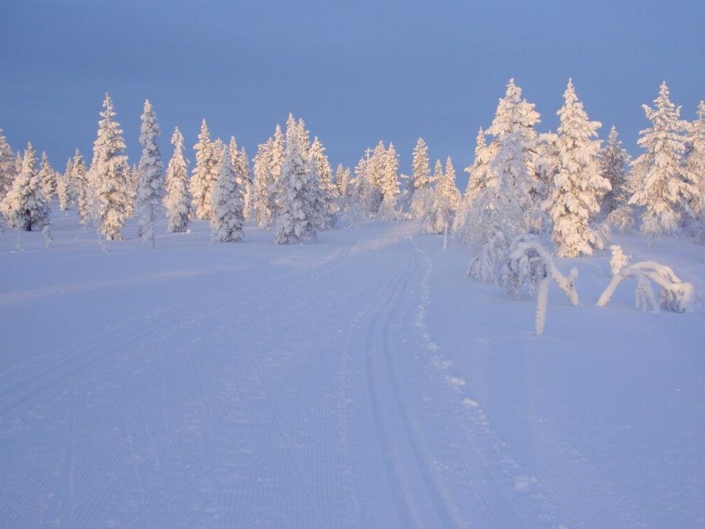 Destino Parque Nacional Urho Kekkonen