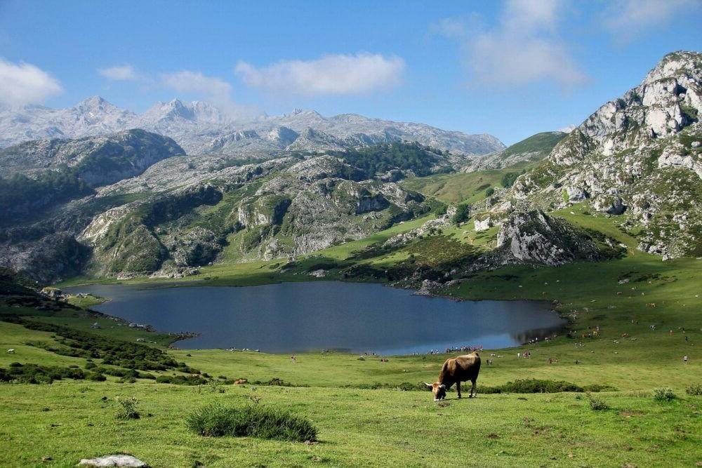 Destino Parque Nacional de Picos de Europa España