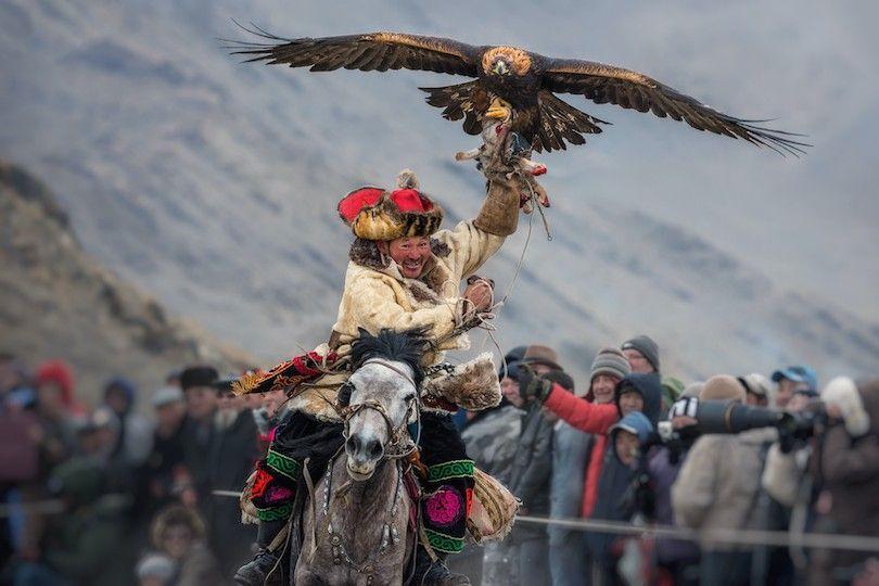 Festival De Oro Águila