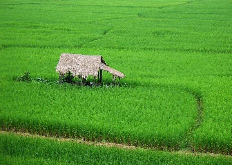 Gira El Norte De Tailandia