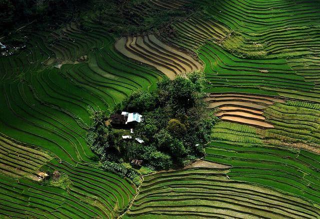 Ifugao Provincia