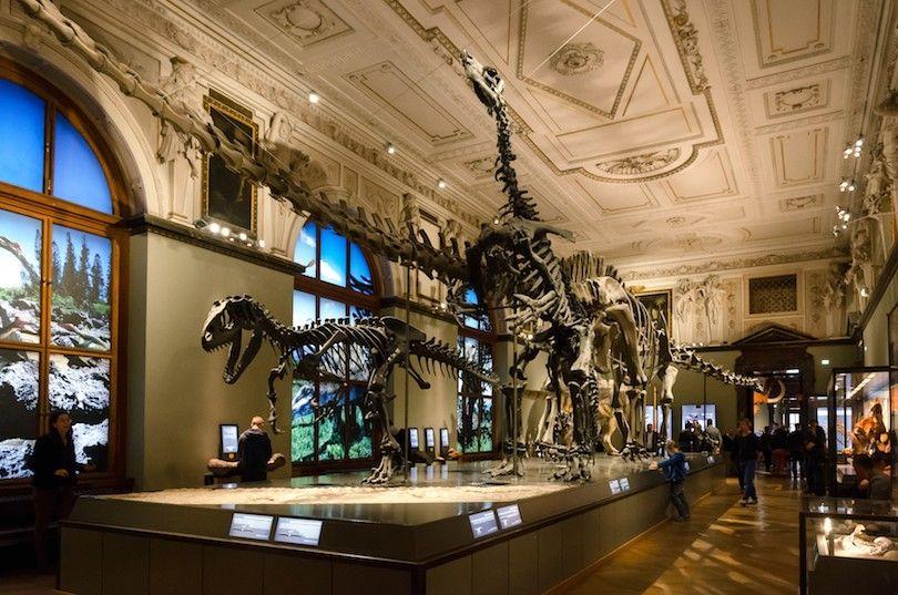 Museo De Historial Natural Viena