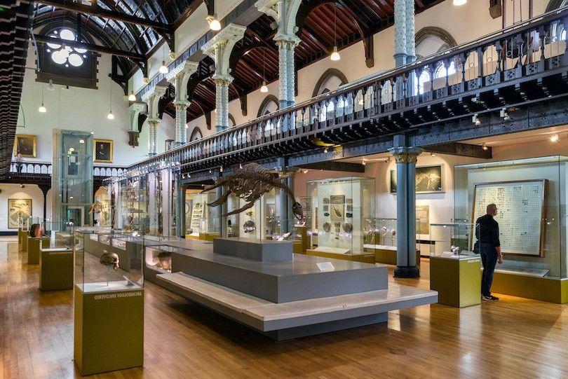 Museo Hunterian
