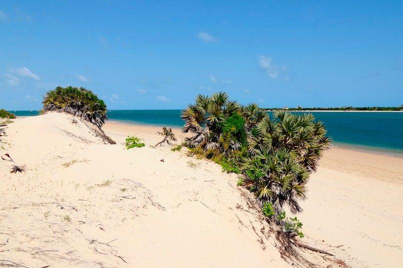 Playas Lamu