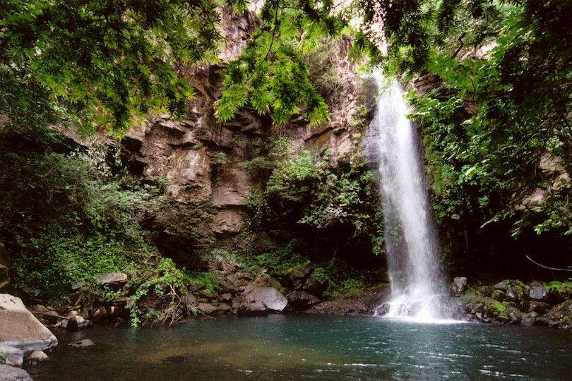 Rincón De La Vieja Parque Nacional Volcán