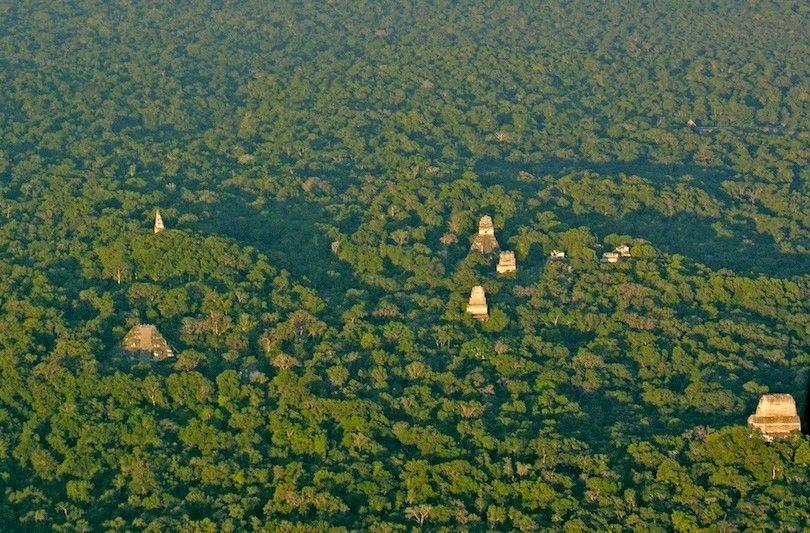 Tikal Aérea