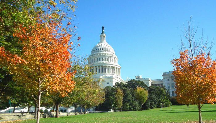 Visita el Capitolio en Washington D.C. 2