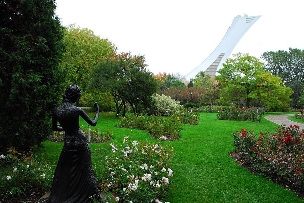 Montreal qué ver 5