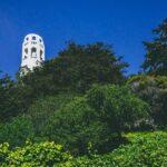 Guía de la Torre Coit de San Francisco