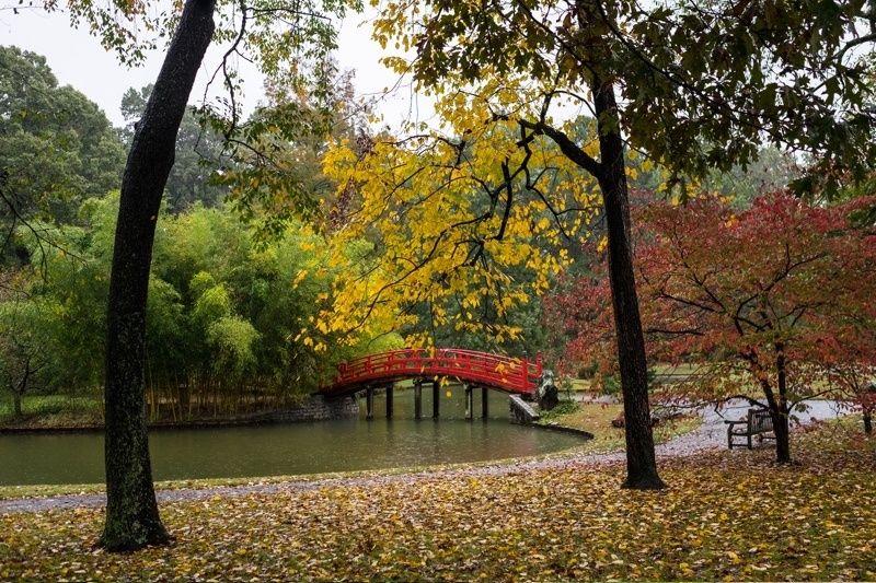 Jardín Botánico de Memphis