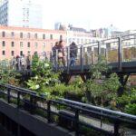 Cosas súper divertidas que hacer en Hudson Yards este verano