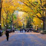 El follaje de otoño en Nueva York - Nuestra guía completa