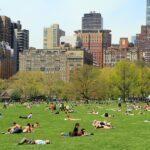 Primavera en NYC